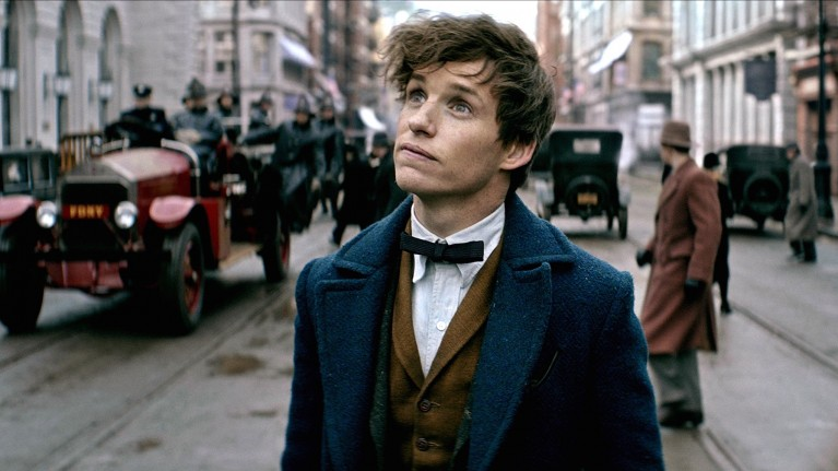 Fantastic Beasts and Where to Find Them: Film Guide