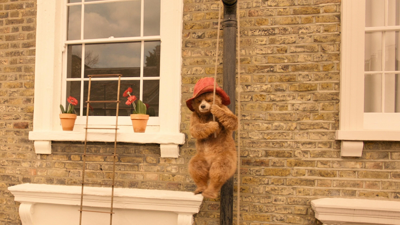 Paddington 2 (hanging around)