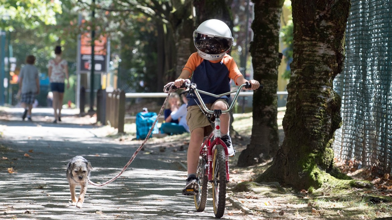 Wonder (bike)