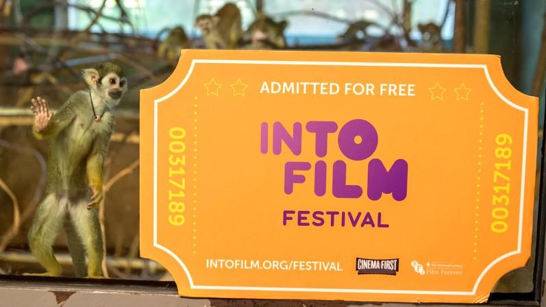 Into Film Festival ticket at Edinburgh Zoo with Monkey