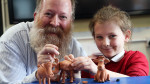 Jim Parkyn of Aardman visits Llanharan Primary School (7)