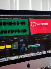 ScreenWorks Editing