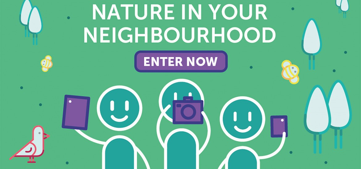 Nature in your Neighbourhood Competition