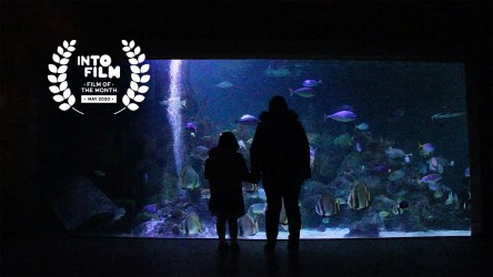Fish Out of Water - Film of the Month winner, May 2020