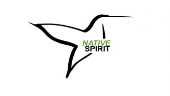 Native Spirit Foundation Logo2