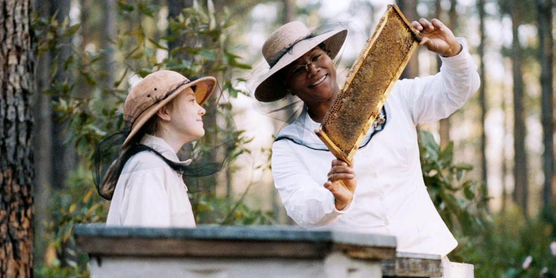 the secret life of bees coming of age 2014-11-7 the title of the book what very intriguing, so it automatically attracted me i found it very interesting that the books took place during the 1960s, so it closely related to the many themes we discussed about racism.