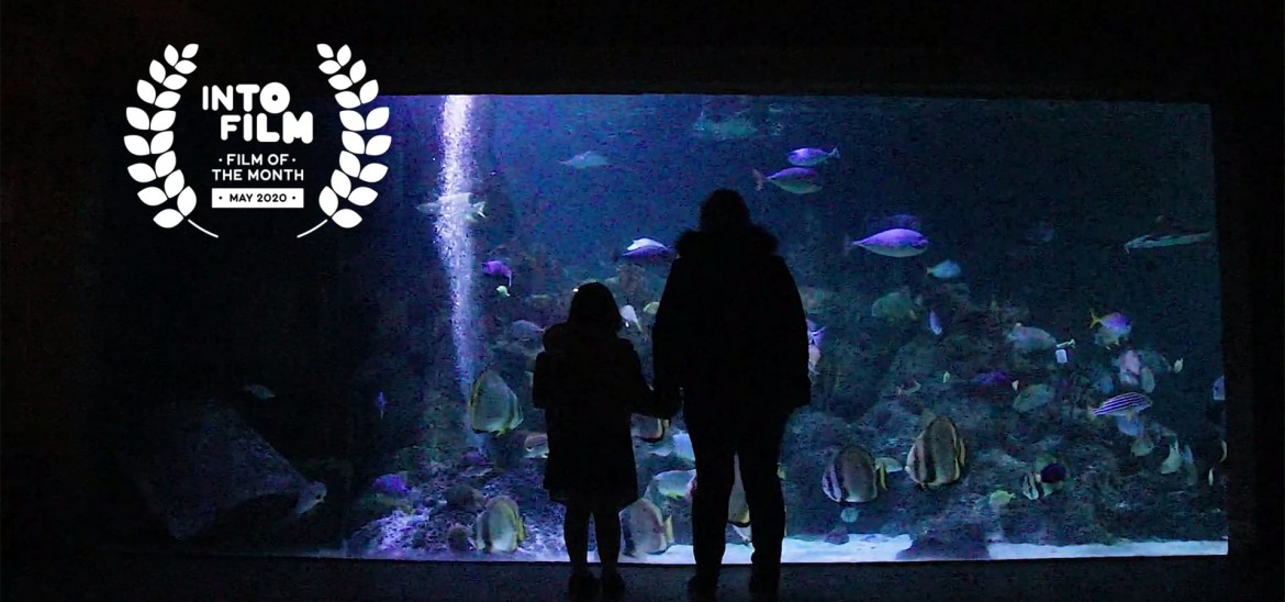 'Fish out of Water' is May 2020's Film of the Month winner