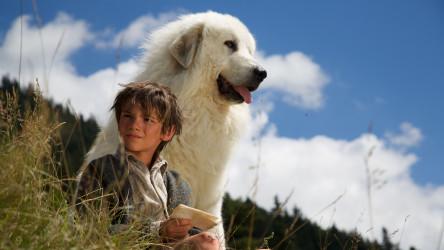 Belle et Sébastien, l'aventure continue (Belle & Sebastian: The Adventure Contin