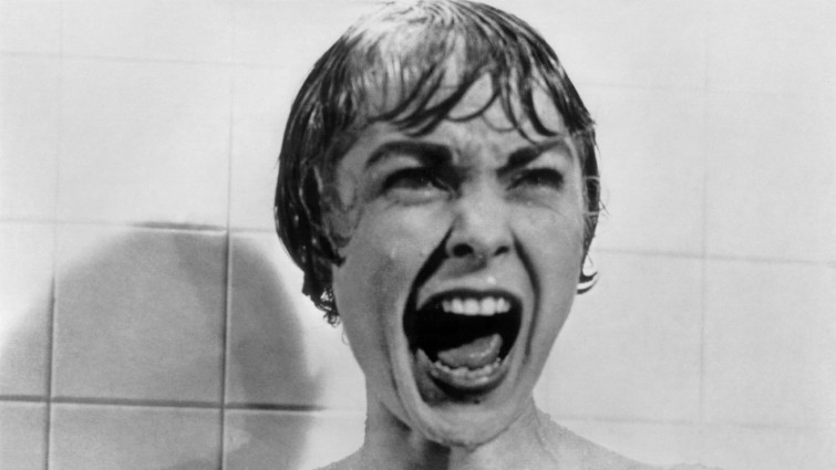 Still image showing an image of a woman's head screaming from the film Psycho 1960. Close up - Shows the character from the shoulders to the top of the head. Used for capturing character's facial expressions.